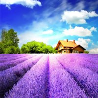 5D DIY Diamond Painting Lavender Landscapes Embroidery Rhinestones Cross Stitch Craft 30X30cm